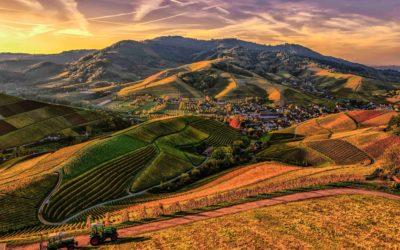 How Rural Areas Became Drug Hubs
