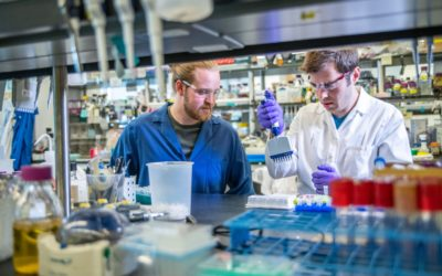 Stem Cells for Addiction Recovery Treatment