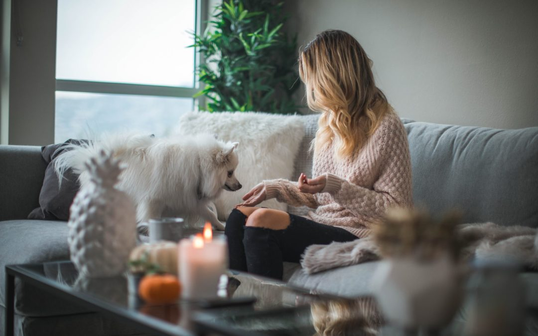 Addiction Recovery At Home During Quarantine